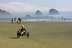 People having family fun along the Oregon Coast at Cannon Beach, Oregon. Trike rentals are available nearby.