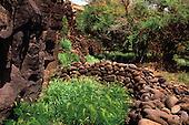 Mamaki Heiau on the Island of Lanai
