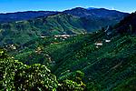 Costa Rica, Tarrazu Valley, Coffee Farm, High Elevation, Coffee Plants, Talamanca Mountain Range, The Los Santos Region