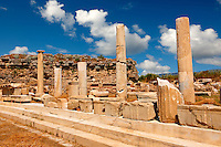 Columns aropund the  the sanctuary of Artimis with the Agora, Magnesia on the Meander arcaeological site, Turkey