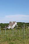 Farm on Old Mission Peninsula, Lake Michigan, Traverse City area, Michigan, USA