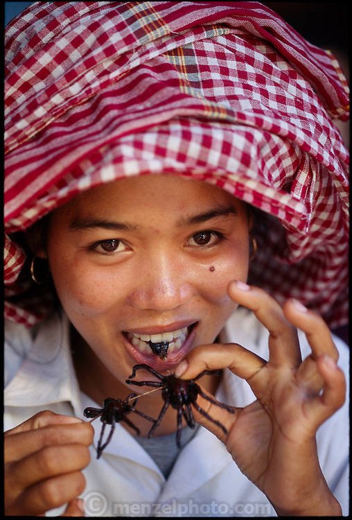 CAM.meb.1.xxs.Tarantula seller Sok Khun takes a dainty bite of one of the deep-fried tarantulas that she sells at a roadside market, Kampong Cham Province, Cambodia. ?The tarantulas are greasy, and taste like the oil in which they are fried. The legs are crispy, and each big hairy body is a decent-sized chewy bite that tastes like?deep-fried tarantula. ?In the English language there are no words to describe it. If day-old deep-fried chickens had no bones, had hair instead of feathers, and were the size of a newborn sparrow, they might taste like tarantulas. That's as close as I can come.??Peter Menzel. (page 48. See also cover of book) .