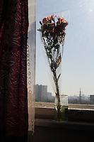 Flowers in the hospital room window of Oleh, 60, at Public Ambulance Hospital in Kiev, Ukraine on April 5, 2014.