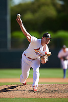 Glendale Desert Dogs pitcher Rowan Wick (99), of the St. Louis Cardinals organization, during a game against the Mesa Solar Sox on October 20, 2016 at Camelback Ranch in Glendale, Arizona.  Glendale defeated Mesa 3-2.  (Mike Janes/Four Seam Images)
