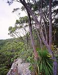 Mt Eliot Lookout, Katandra, NSW