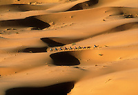 Caravan of camels and riders trekking across the desert sand dunes of Morocco at dawn.