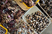 Wide variety of seafood, including fresh crabs, mussels and chopped squid, is seen at Chorrillos seafood and fish market in Lima, Peru, 31 March 2013.