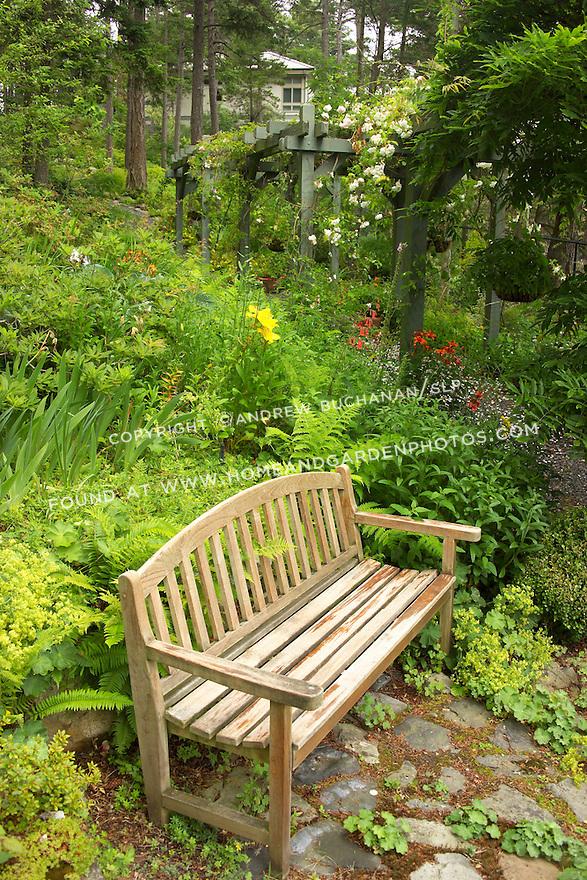 a wooden garedn bench sits aside a garden path that runs along the base of a hillside planted as a verdant woodland garden