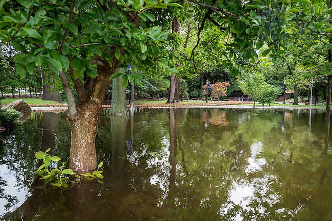 August 16, 2016; The Grotto after a record-setting rainfall. (Photo by Matt Cashore/University of Notre Dame)