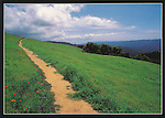 RT 1.  Bay Area Ridge Trail. San Mateo County