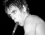 Iggy Pop performs onstage at the Palladium theater in New York City in November 1977 with a microphone in his mouth.