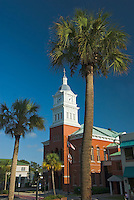 Florida, Fernandina Beach , Palm Tree and Building, Centre Street