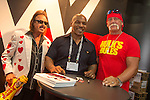 WWE Licensing Show 2015 Hulk