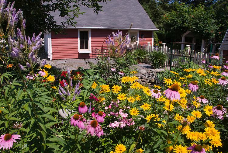 Beautiful flowering garden backyard long view Plant
