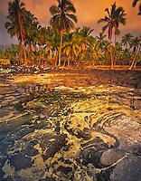 Tidal pool reflection Big Island of Hawaii pu' uhonua O Honaunau National Historical Park (City of Refuge) Abstract lavas underwater March