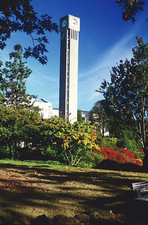 Clock tower on University of British Columbia campus in fall, with cirrus intortus clouds, Vancouver, BC.