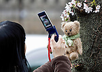 A woman uses her mobile phone to take a photo of her Teddy bear under a cherry blossom tree in Tokyo, Japan on 31 March, 2010.