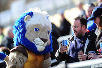 Bath Rugby mascot Maximus mingles with supporters prior to the match. Aviva Premiership match, between Bath Rugby and Wasps on March 4, 2017 at the Recreation Ground in Bath, England. Photo by: Patrick Khachfe / Onside Images