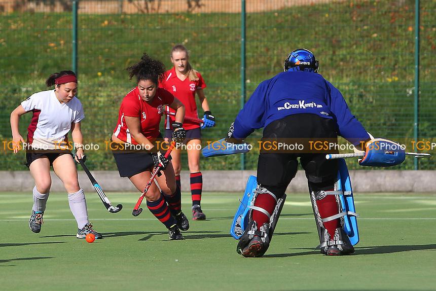 Havering HC Ladies vs Wapping HC Ladies 3rd XI - Essex Hockey League at Campion School - 02/11/13 - MANDATORY CREDIT: Gavin Ellis/TGSPHOTO - Self billing applies where appropriate - 0845 094 6026 - contact@tgsphoto.co.uk - NO UNPAID USE