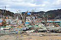 April 3rd, 2011, Shizugawacho, Japan - Plastic containers, fishing lines and gear are caught on the trees in Shizugawacho, Miyagi Prefecture, on April 3, 2011, merely three weeks after this otherwise sleepy northeastern Japan fishing village was destroyed by a magnitude 9.0 earthquake and ensuing tsunami. (Natsuki Sakai/AFLO) [3615] -mis-...