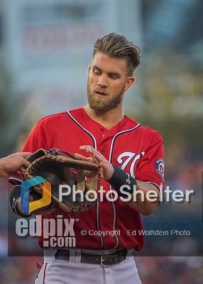 6 August 2016: Washington Nationals outfielder Bryce Harper receives his hat and glove after an at-bat against the San Francisco Giants at Nationals Park in Washington, DC. The Giants defeated the Nationals 7-1 to even their series at one game apiece. Mandatory Credit: Ed Wolfstein Photo *** RAW (NEF) Image File Available ***