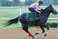 HOT SPRINGS, AR - April 14: Petrov gallops at Oaklawn Park on April 14, 2017 in Hot Springs, AR. (Photo by Ciara Bowen/Eclipse Sportswire/Getty Images)