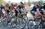 Mark Cavendish (GBR) Team Dimension Data in action during Stage 1 Emirates Motor Company Stage of the 2017 Abu Dhabi Tour, running 189km from Madinat Zayed through the desert and back to Madinat Zayed, Abu Dhabi. 23rd February 2017<br /> Picture: ANSA/Claudio Peri | Newsfile<br /> <br /> <br /> All photos usage must carry mandatory copyright credit (&copy; Newsfile | ANSA)