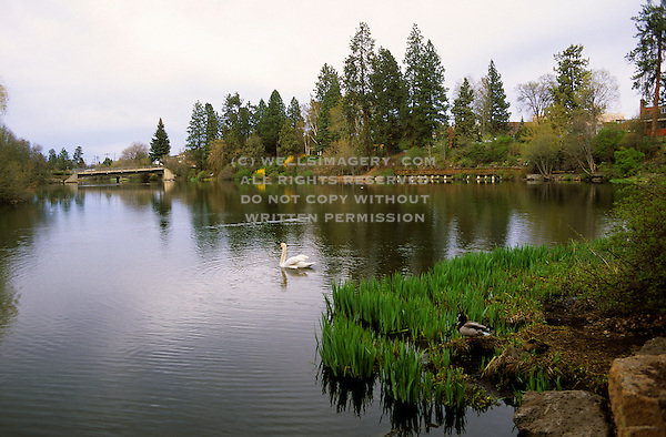 Park along the deschutes river in bend oregon pacific northwest