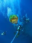 Orchid Island, Taiwan -- Divers descending onto the Ba Dai ship wreck.