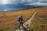Female hiker hiking through autumn landscape towards Pårte hut, Kungsleden trail, Lapland, Sweden