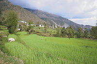 View of the Valley.