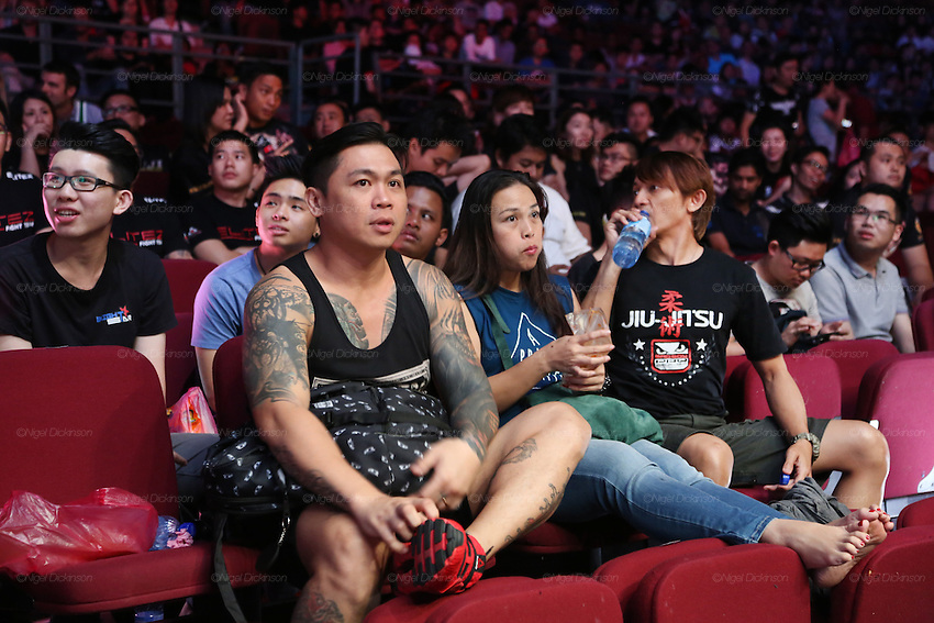 Spectators watching the fight<br /><br />MMA. Mixed Martial Arts &quot;Tigers of Asia&quot; cage fighting competition. Top professional male and female fighters from across Asia, Russia, Australia, Malaysia, Japan and the Philippines come together to fight. This tournament takes place in front of a ten thousand strong crowd of supporters in Pelaing Stadium. Kuala Lumpur, Malaysia. October 2015