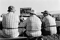 Switzerland. Canton Fribourg. Estavayer. A typical swiss family wearing traditional Edelweiss flower shirts is seated on a wooden bench and watches wrestlers fighting on a giant television screen during the Federal Wrestling and Alpine Games Festival. 27.08.2016 © 2016 Didier Ruef