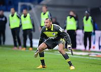 FUSSBALL   1. BUNDESLIGA   SAISON 2012/2013   20. SPIELTAG    TSG 1899 Hoffenheim  - SC Freiburg      02.02.2013 Torwart Heurelho Gomes (TSG 1899 Hoffenheim)