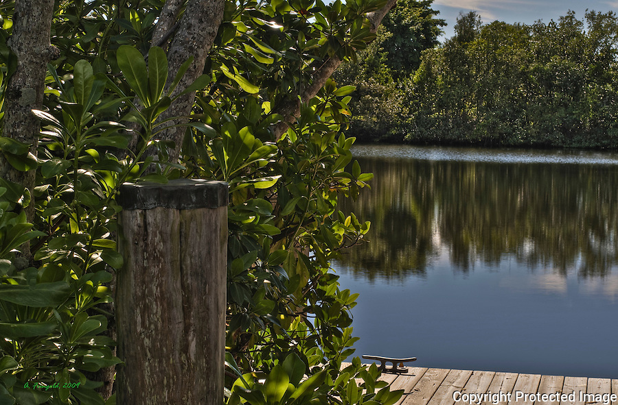 Coral Gables Canal, HDR, Coral Gables Dock, Cocoplum, Mangroves, Sunny Miami<br />