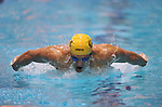 24 MAR 2012: Thomas Shields of the University of California competes in the 200 yard butterfly race during the Division I Men's Swimming and Diving Championship held at the Weyerhaeuser King County Aquatic Center in Seattle, WA.  Shields finished second in a time of 1:41.07 but was named Swimmer of the Meet.  Rod Mar/ NCAA Photos