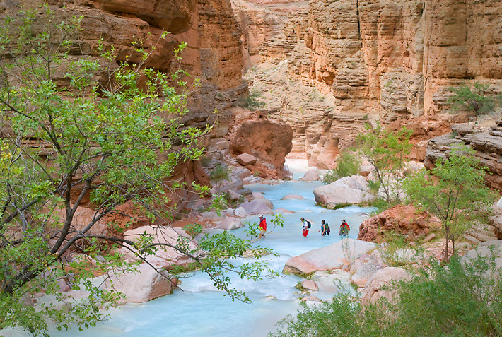 Four hikers cross Havasu Creek on their way to Beaver Falls.