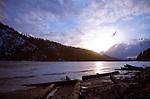 Idaho, Coeur d' Alene. A bird flies into the setting sun over a frozen Wolf Lodge Bay on Lake Coeur d Alene.