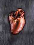 A real meaty heart