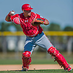 25 February 2016: Washington Nationals catcher Wilson Ramos works drills during the first full squad Spring Training workout at Space Coast Stadium in Viera, Florida. Mandatory Credit: Ed Wolfstein Photo *** RAW (NEF) Image File Available ***