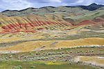 Foreground to background geology at Painted Hills National Monument, central Oregon.