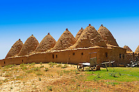 "Pictures of the beehive adobe buildings of Harran, south west Anatolia, Turkey.  Harran was a major ancient city in Upper Mesopotamia whose site is near the modern village of Altınbaşak, Turkey, 24 miles (44 kilometers) southeast of Şanlıurfa. The location is in a district of Şanlıurfa Province that is also named ""Harran"". Harran is famous for its traditional 'beehive' adobe houses, constructed entirely without wood. The design of these makes them cool inside. 36"