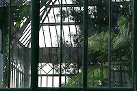 Plant History Glasshouse (formerly Australian Glasshouse), 1830s, Rohault de Fleury, Jardin des Plantes, Museum National d'Histoire Naturelle, Paris, France. Detail of view through the window showing the luxuriant Tropical vegetation in the glasshouse and its reflection in the glass and metal structure.