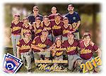 2015 Burlington American Maples