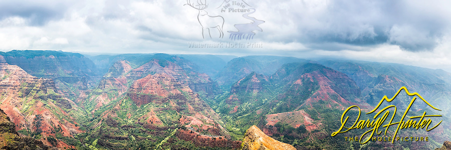 Waimea Canyon Panorama.  The reds and greens of Waimea Canyon really pop on a stormy day.  This is a large format stitched file of 220 megabytes that can be printed at 210dpi at 6 foot wide, could hold up, or 8 foot wide at 150dpi.