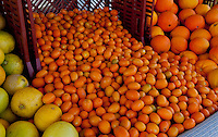 A flowing pile of kumquats at SoCo's Farmers' Market.