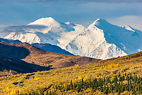 The north and south summits of Mt McKinley are visible as a bus travels the gravel, Denali Park road, Denali National Park.