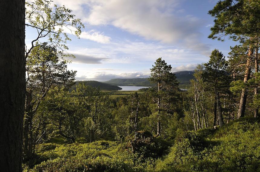 Resdalen valley,Trollheimen,Norway Landscape, landskap,