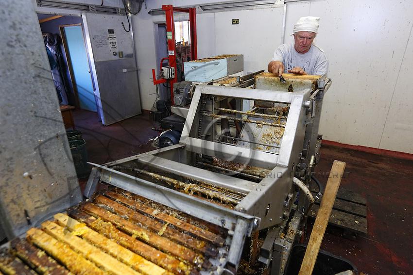 In the honey house, the extraction chain uncaps the honey frames then they are put into the cappings dryer. The honey comes out of the wax cells through centrifugal force. Liquid, it is then filtered.///Dans la miellerie, la chaîne permet de désoperculer les cadres de miel puis ils sont installés dans la centrifugeuse. Le miel sort des cellules de cire sous l'effet de la force centrifuge. Liquide, il est par la suite filtré.
