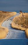 A rural gravel road winds through grasslands in western Montana